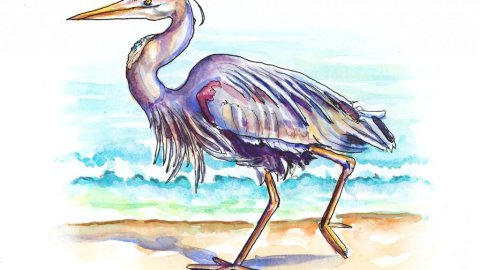 Day 4 - Heron Beach Watercolor Illustration - Doodlewash