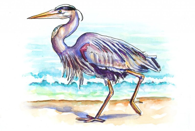 Day 4 - Heron Beach Watercolor Illustration - Doodlewash