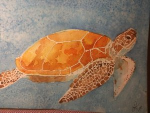 Sea Turtle done with masking fluid and salted background. IMG_20190130_192601532