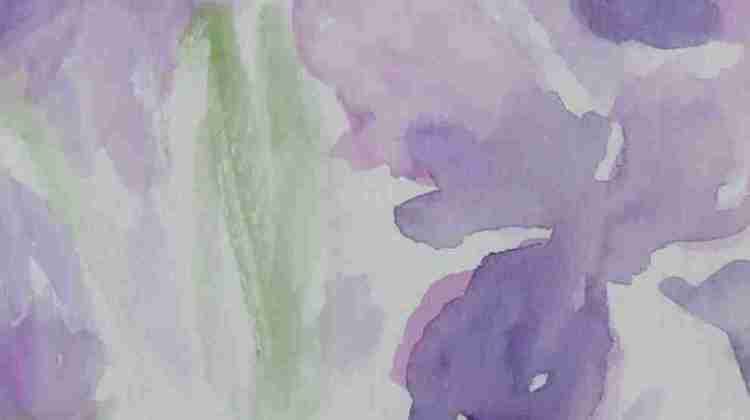 detail of a recent iris watercolor IMG_5770 (2)