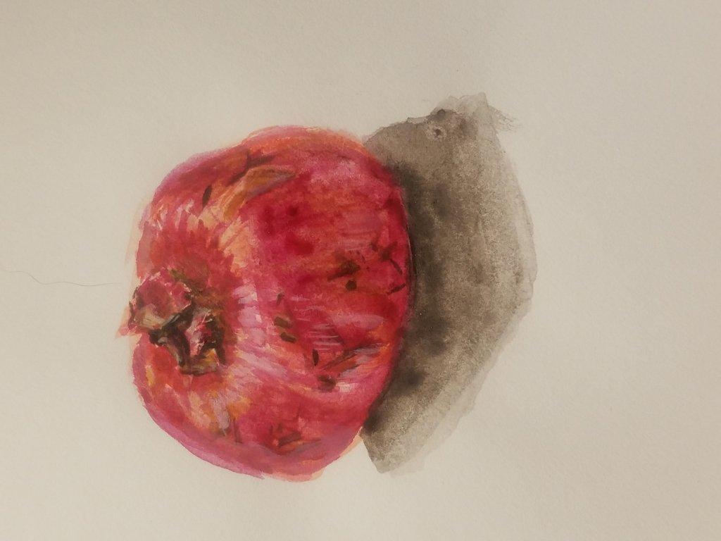 Pomegranate Still Life pom