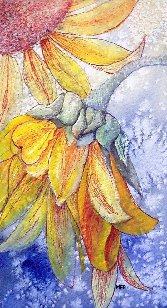 Sunflower Watercolor Painting By Mary Roff