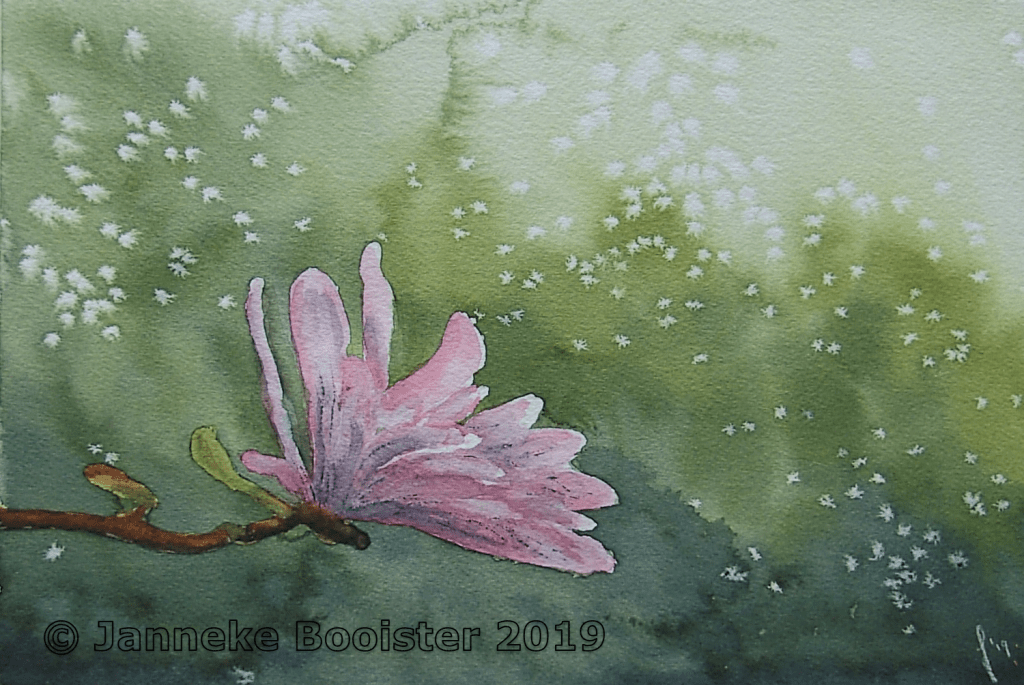 Another Star Magnolia, from the same tree, the same reference picture and again I have made the back