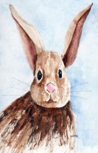 4/21/19 Bunnies 4.21.19 Bunnies img262