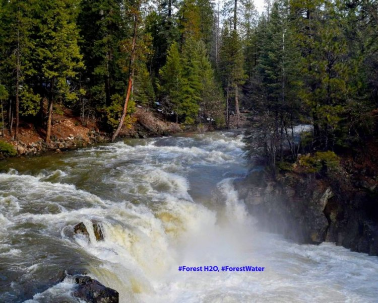 Lower Falls high water 56670181_2353012941597418_1226191761185964032_o