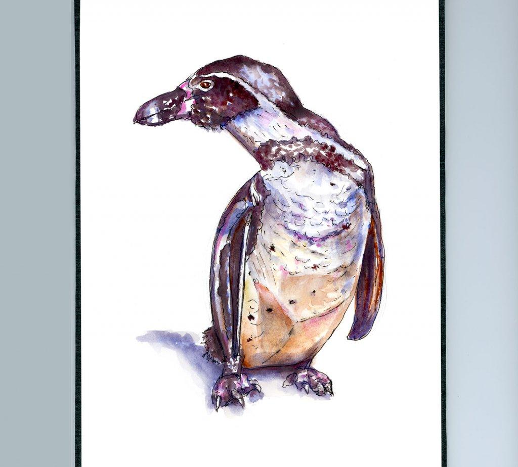 Day 25 - Penguin Watercolor Illustration - Doodlewash