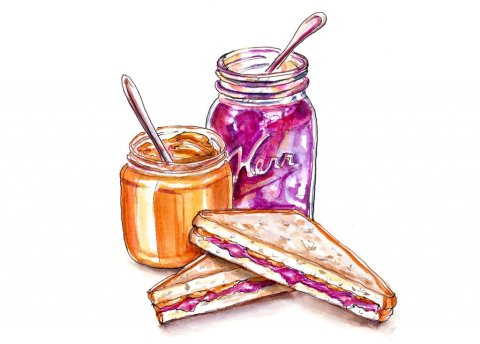 Day 3 - Peanut Butter And Jelly Illustration - Doodlewash