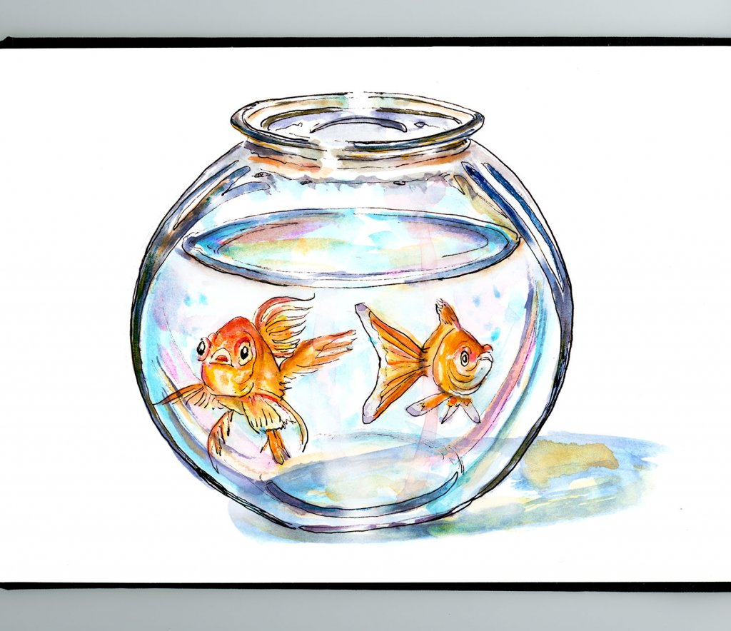 Two Goldfish Bowl Illustration Watercolor - Doodlewash
