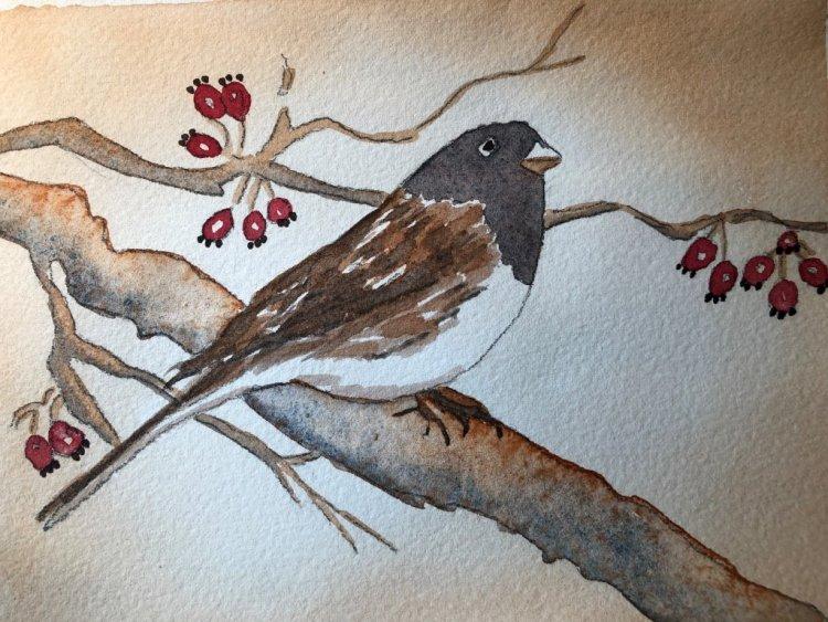 Tea wash around this cute little bird. IMG_4072