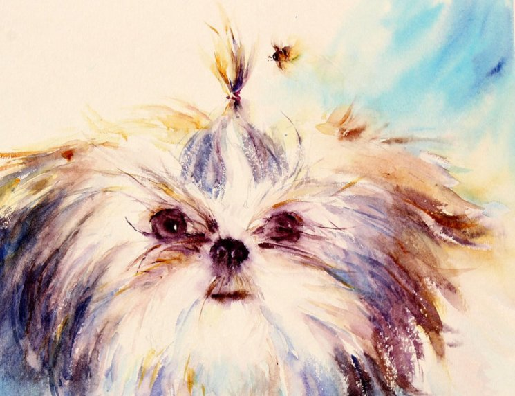 Dog And Bee Watercolor Painting by Qinghong Wei - Doodlewash