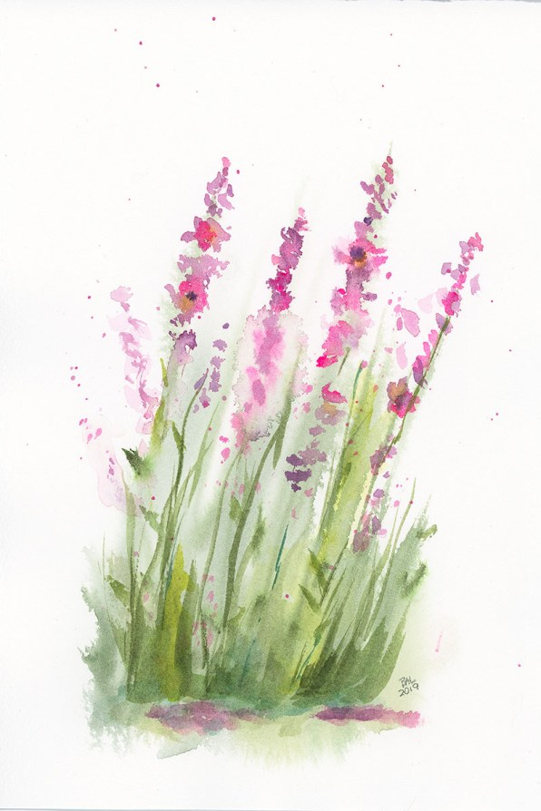 Penstemon Watercolor Painting by Bette-Ann LaBerge