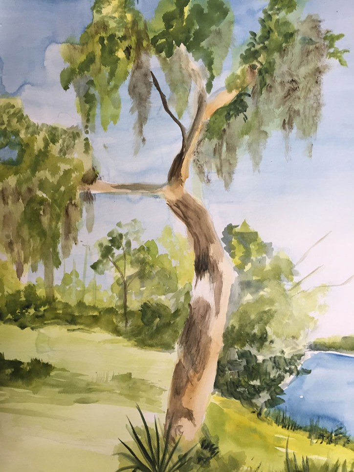 Live Oak Watercolor Painting by Karalee Hammes - Doodlewash