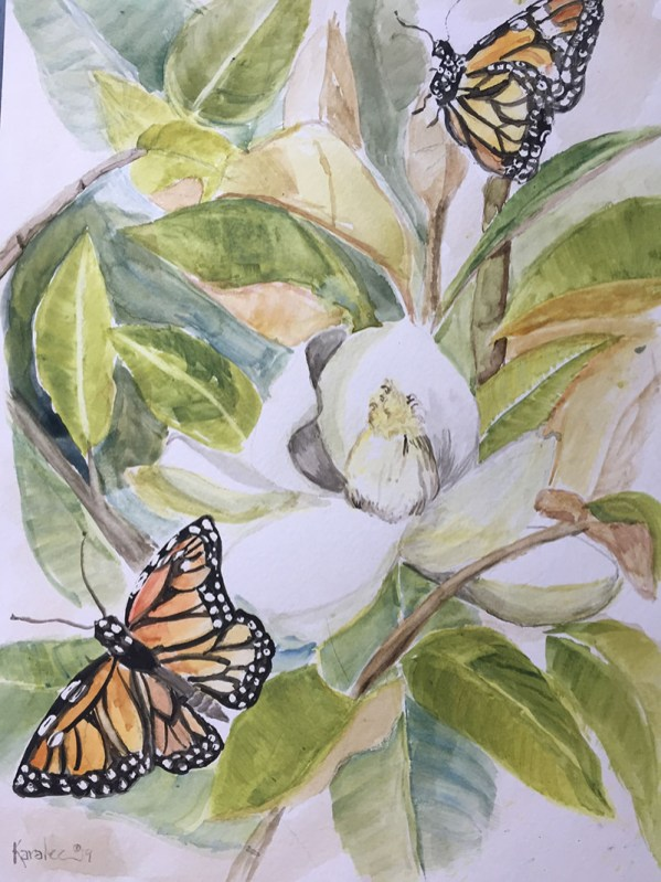 Butterflies And Magnolia Watercolor Painting by Karalee Hammes - Doodlewash