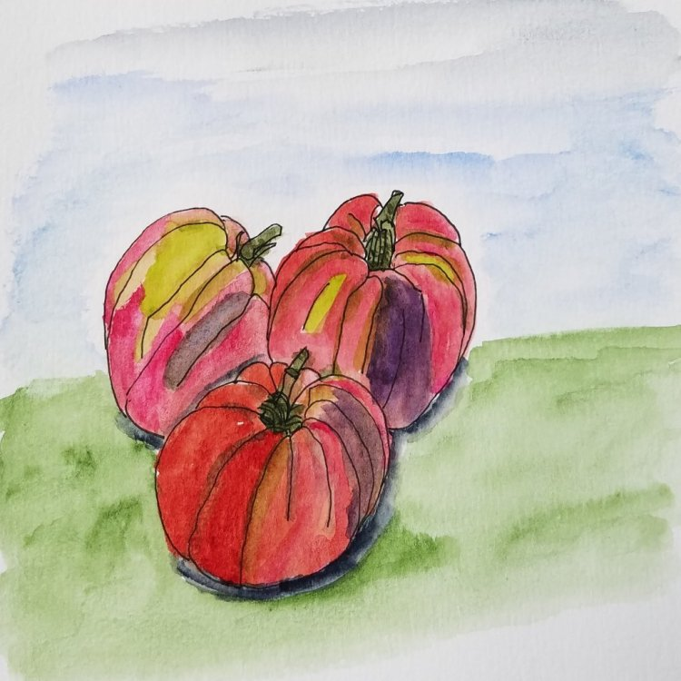 I can\'t wait until the heirloom tomatoes are ready at the lical farm stand. They taste so muc