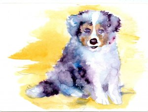 Australian Shepherd Puppy-Loose and flowing is not my style, but I want to do it all, so occasionall