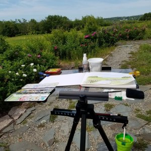 This is my plein air setup. IMG_20180617_100449_311