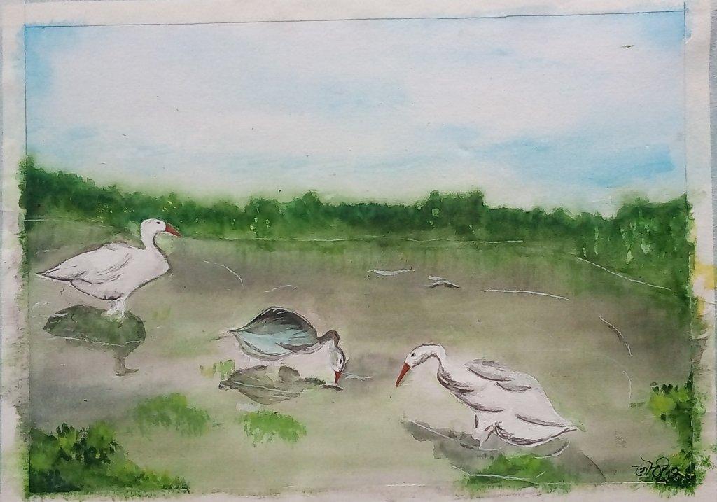 Day8 Ducks #WorldWatercolorGroup #doodlewashJune2019 IMG_20190608_144940