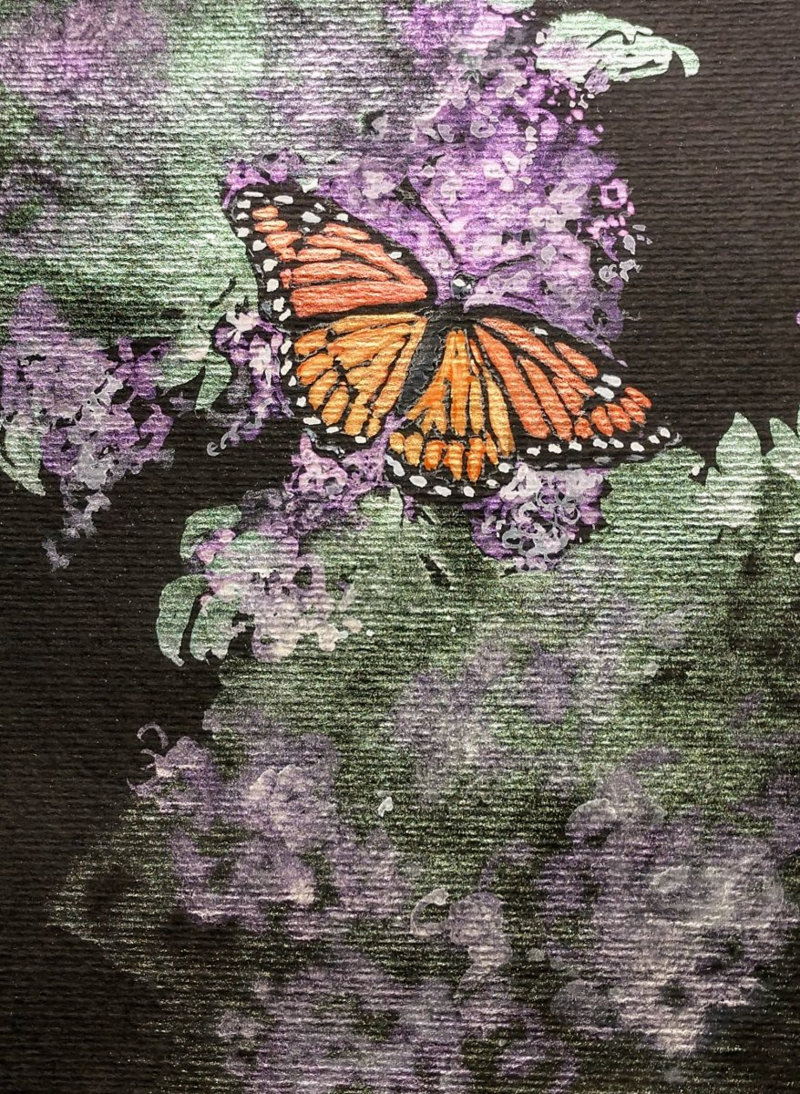 Butterfly Painting on Black Watercolor Paper