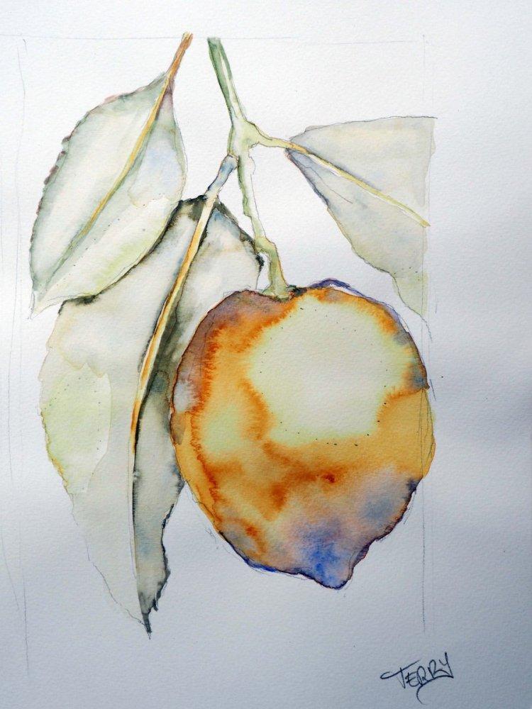 Still working with fruit series, Lemon using wet wash. TerryH_lemon-01
