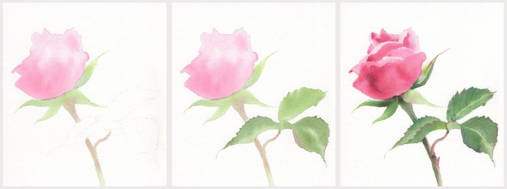 TUTORIAL: How to Paint a Rose in Watercolor