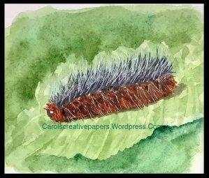 Furry, #worldwatercolormonth2019 59C74155-93FA-49B2-A65F-A28D4194095A