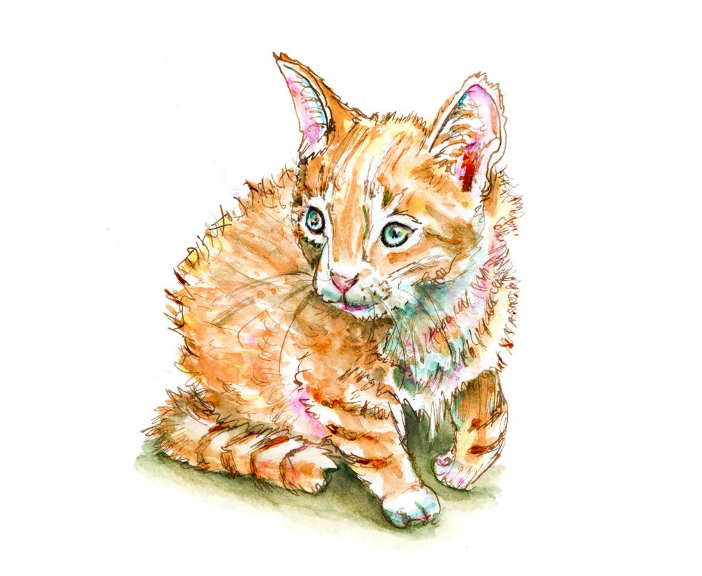 Kitten Ball Of Fur Watercolor Illustration