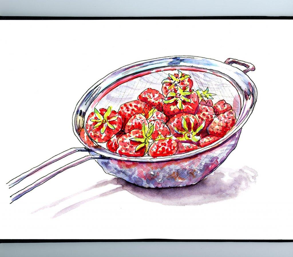Strawberries Metal Colander Illustration Sketchbook Detail