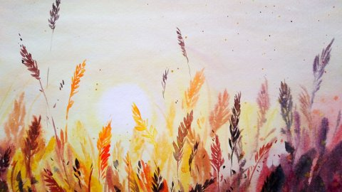 Nesrine Ziadi watercolor Sunset Doodlewash