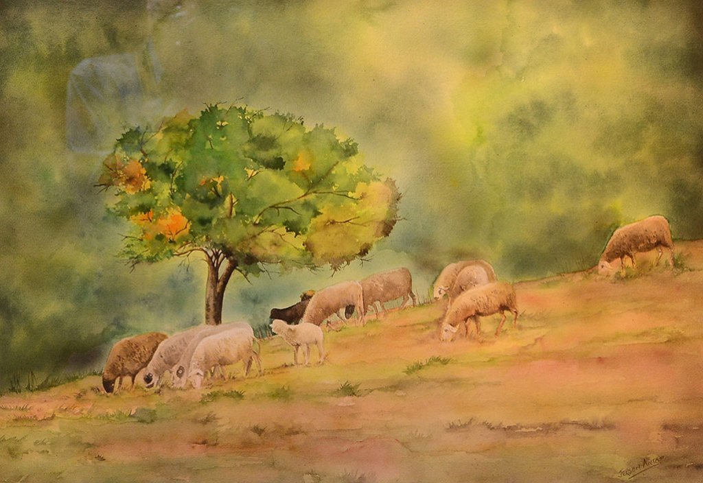 Sheep Watercolor Painting by Jerson Antao
