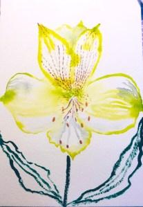 Alstroemeria, inspired by a lesson by Kris Keys. 55FB329A-27DE-4429-B5D0-3FA9725239C4