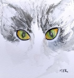 9/16/19 Eyes Our Miss Alli cat was born with permanent eyeliner…and beautiful eyes. 9.16.19 Ey