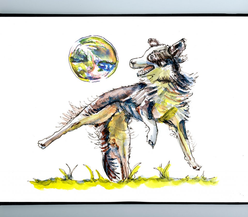 Dog Playing With Soap Bubbles Watercolor Illustration Sketchbook Detail