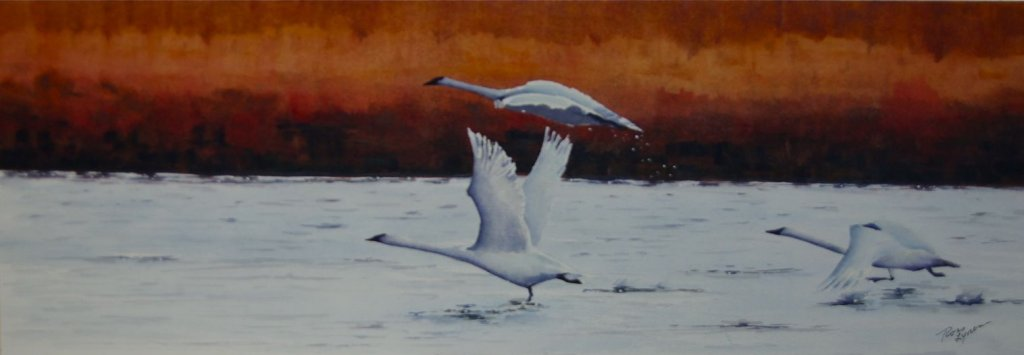 Paintings – 075IMGP9217P1040906P1020418P1050027