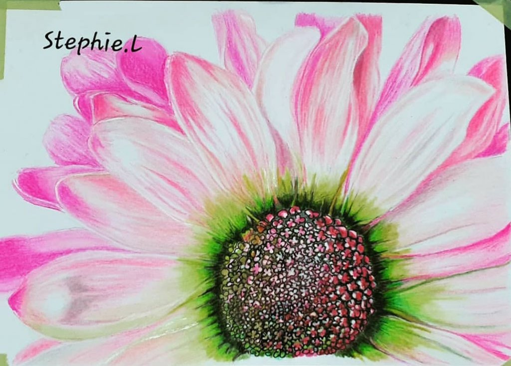 Pink Flower Watercolor by Stephanie Louise