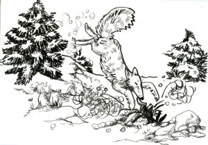 now Fox-I think it's amazing the way a Fox hunts in the snow. Zebra Brush & Technical Pen