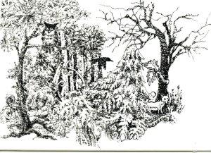 Overgrown Forest for Inktober – Cuttlelola Electric Dotspen on a Hahnemühle Nostalgie Postcar