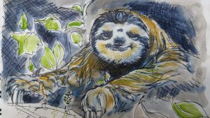 Day 18 Sloth …but it reminds me of a star war ewok, I loved that serial!!!haha 🙂 #doodlewas