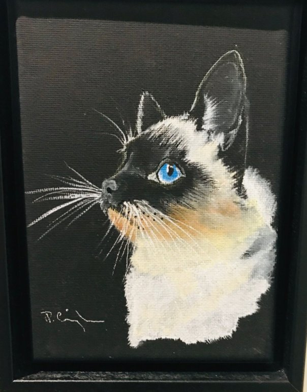 Acrylic Painting White Cat On Black