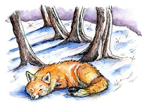 Fox Snow Scene Watercolor Illustration