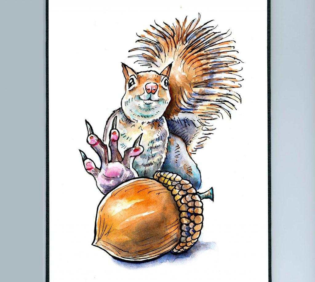 Squirrel Grabbing For Acorn Nut Watercolor Illustration Sketchbook Detail