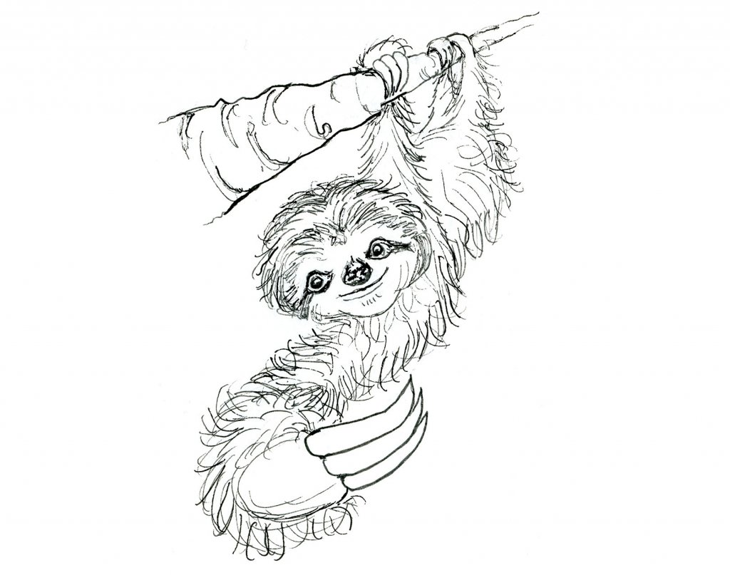 Day 18 - Sloth On Tree Branch Inktober 2019 Illustration