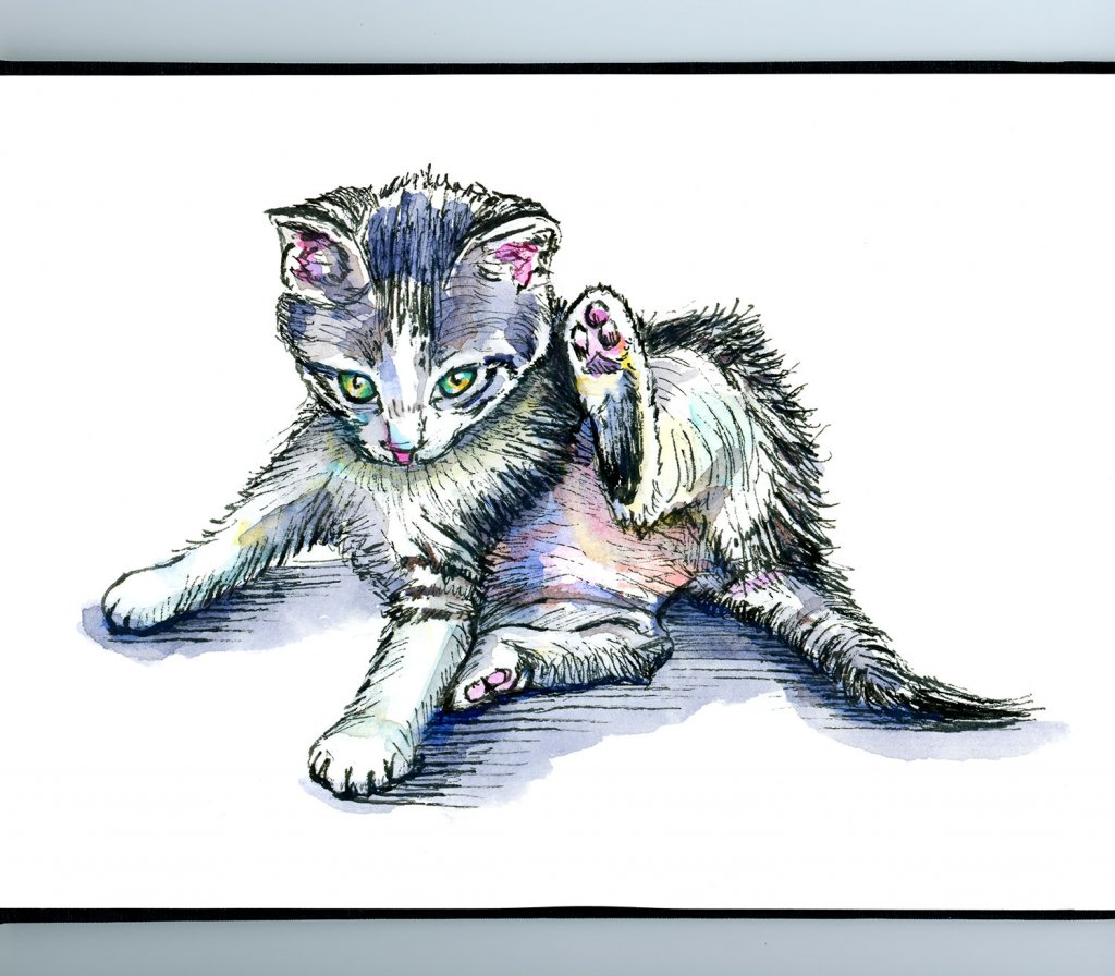 Kitten Laying After Chasing Tail Watercolor Illustration Sketchbook Detail