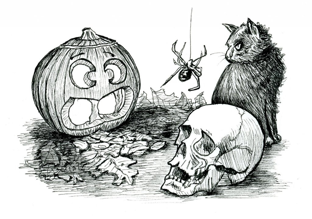 Halloween Pumpkin Skull Cat Spider Inktober Illustration