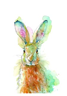 Hare Watercolor Painting by Valerie de Rozarieux