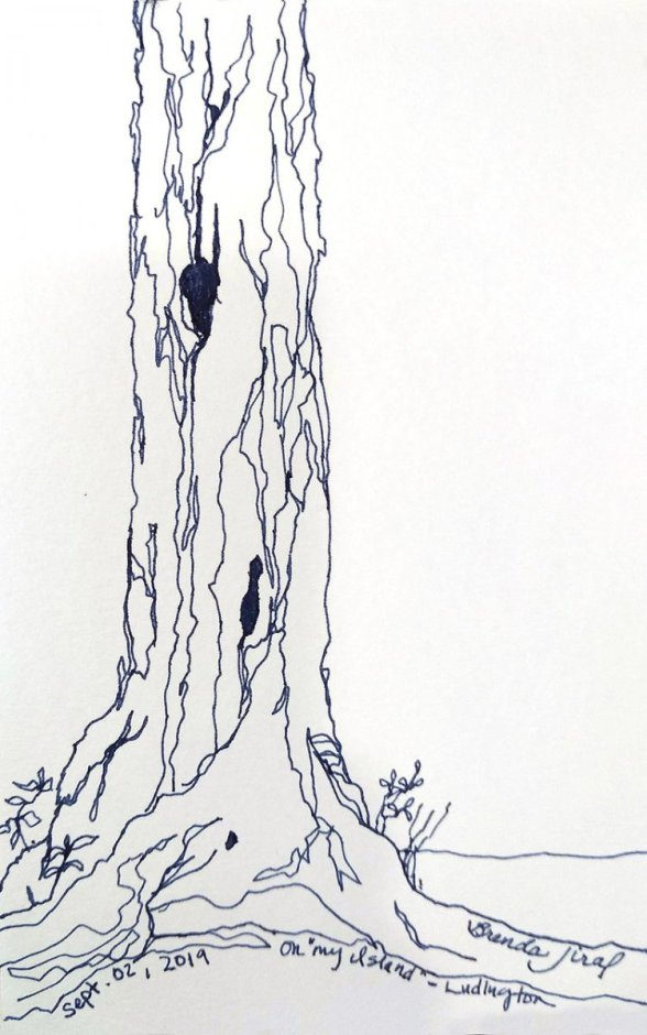 Single Line Contour drawing Tree