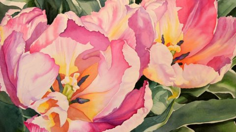Sunlit Tulips - Watercolor Painting by Brenda Jiral