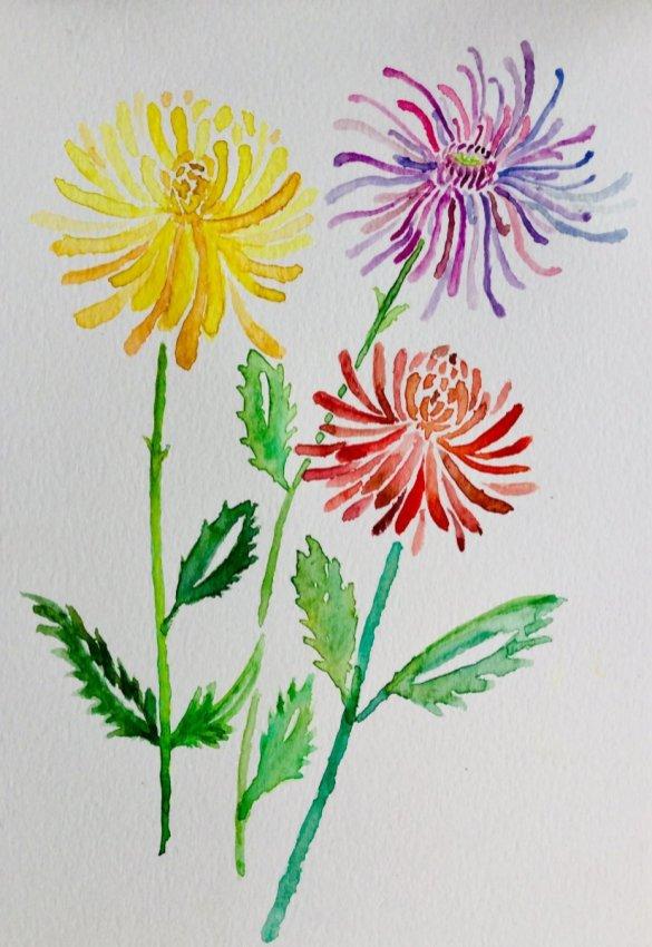 Three Flowers Watercolour