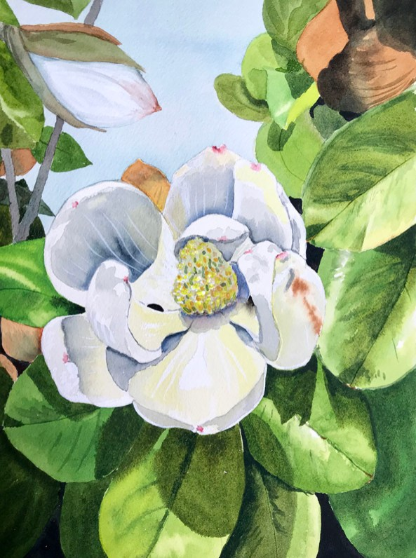 White Flower watercolor Brenda Cunningham