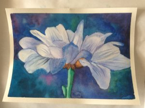 done in a class with a local artist white flower