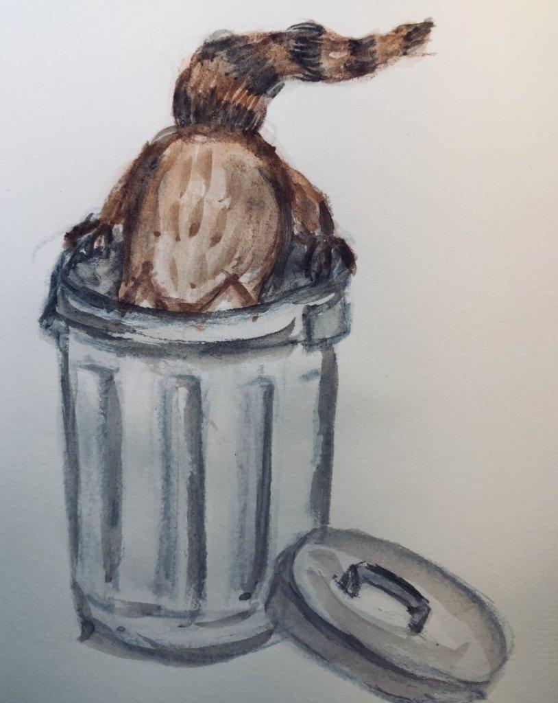 #doodlwashNovember2019 #doodlewashNovember2019FunThingstoDraw Day 18: Raccoon 2C1F0E33-3D2B-49AC-AD8